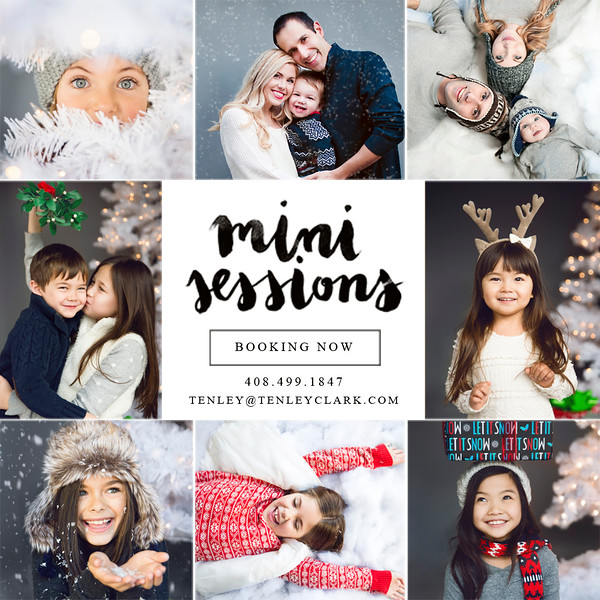 Tenley Clark Photography Bay Area holiday mini sessions 2015- San Jose, Santa Clara, Los Gatos, Los Altos, Campbell, Sunnyvale, Mountain View, Palo Alto