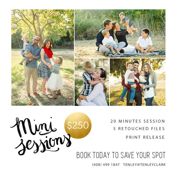 Tenley Clark Photography mini sessions 2015